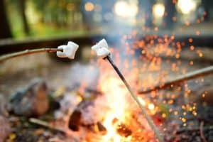 big marshmallow roasting in sticks
