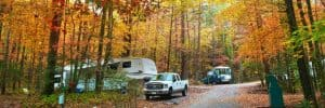 beautiful autumn trees with camping cars