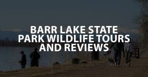 Barr Lake State Park Wildlife Tours and Reviews