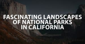 Fascinating Landscapes of National Parks in California