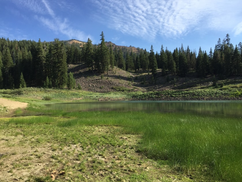 Modoc National Forest Dispersed Camping