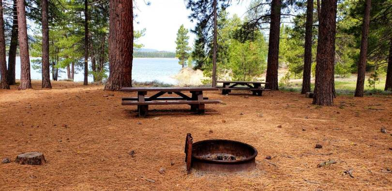 Plumas National Forest Dispersed Camping