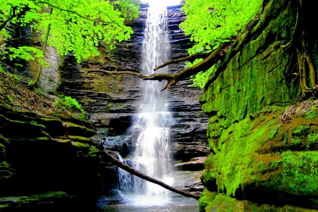 The Best Illinois State Parks